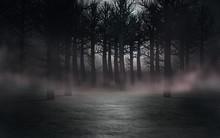 Forest In Fog. 3d Render