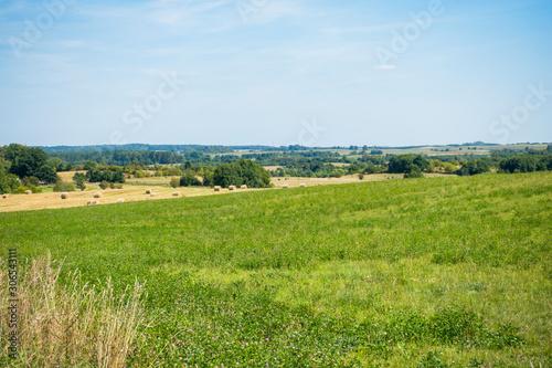 Polana pole las wieś lato