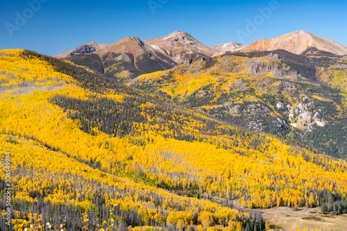 Fall Aspens in the Sun Juan Mountains of Colorado