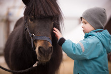 Closeup Of A Kid Stroking A Horse. The Boy Is Preparing To Learn How To Ride A Pony In The Cold Season. Hippotherapy For The Development Of The Baby. A Child In A Turquoise Overalls. Selective Focus