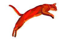 Jumping Geometric Cat