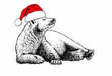 Graphical Bear In Santa Claus ...