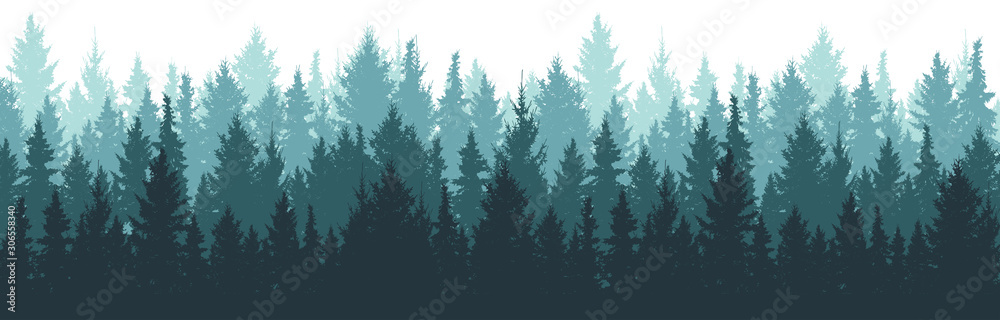 Fototapeta Forest background, nature, landscape. Pine, spruce, christmas tree. Fog evergreen coniferous trees. Silhouette vector
