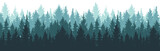 Fototapeta Fototapety z naturą - Forest background, nature, landscape. Pine, spruce, christmas tree. Fog evergreen coniferous trees. Silhouette vector