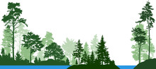 Forest Landscape From Isolated Trees. Forest River. Vector Illustration