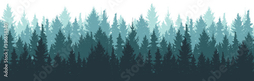 Forest background, nature, landscape. Pine, spruce, christmas tree. Fog evergreen coniferous trees. Silhouette vector - 306558340
