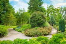 Beautiful Green Park On Summer...