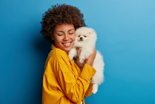 Studio Shot Of Glad Female Model Holds Fluffy Pet Closely To Face After Grooming, Smiles With Happiness, Cares About Pedigree Animal, Being On Friendly Terms With Dog, Poses Against Blue Background.