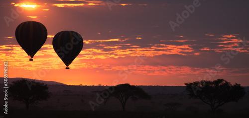 Fotografie, Obraz Dawn at Serengeti National Park, Tanzania, Africa