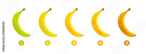 Banana ripeness Canvas-taulu