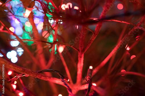 Red holiday lights on tree #306618106