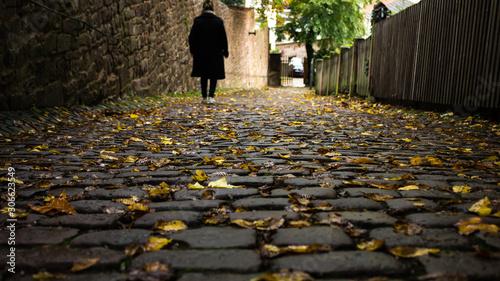 Photo camino de piedras con hojas