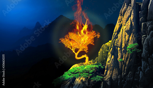 Canvastavla Burning bush plant in a cliff of a mountain