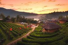Ban Rak Thai Village In The Morning
