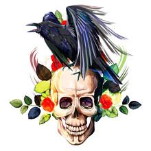 Vintage Illustration Of Raven ...