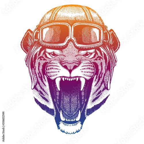 Photo Wild tiger wearing vintage aviator leather helmet