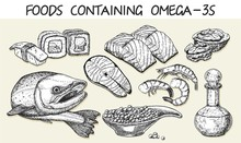 Best Sources Of Omega 3 Vector...