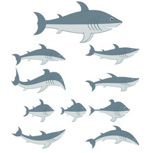 Sharks Set Of Different Shapes And Types. Cartoon Characters. Vector Illustrations.