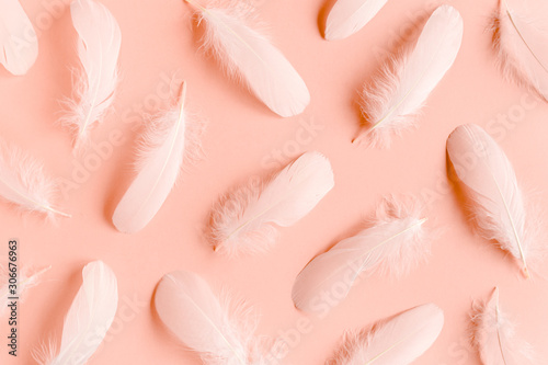 Foto White feather texture on a pink background