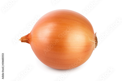Foto One yellow onion isolated on white background close up