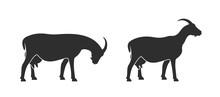 Goat Logo. Isolated Goat On Wh...