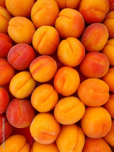 Group of fresh apricots at market Wallpaper Mural