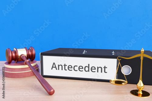 Antecedent – Folder with labeling, gavel and libra – law, judgement, lawyer Wallpaper Mural