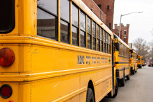 School Public Buses For Jewish...