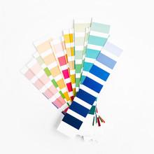 Color Swatch. Color Palette Guide. Rainbow  Scale.