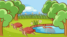 Scene With Turtle In The Pond