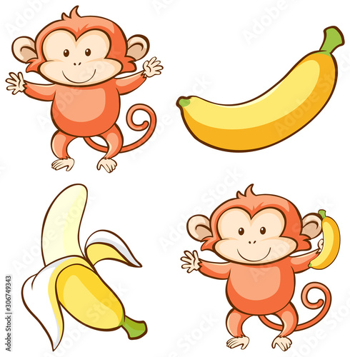 Isolated picture of monkey and banana