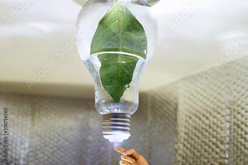 Photo Fonte alternativa di energia elettrica verde e rinnovabile