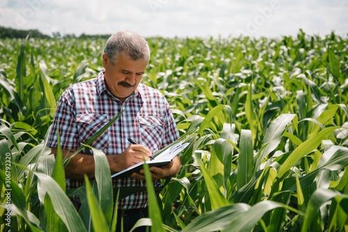 Adult farmer checking plants on his farm Canvas Print