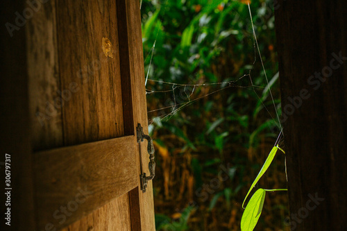 Photo  Old wooden windows in lost house in Asia