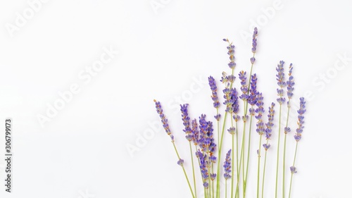 Obraz bouquet of violet lilac purple lavender flowers arranged on white table background. Top view, flat lay mock up, copy space. Minimal background concept. Dry flower floral composition isolated on white. - fototapety do salonu