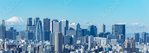 (東京都-風景パノラマ)青空の下の富士山と新宿ビル群2