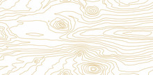 Seamless Wooden Pattern. Wood ...