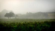 Early Morning Misty Farmland