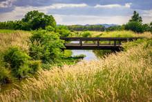 Small Bridge In Countryside