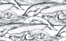 Vector Monochrome Seamless Pattern With Ocean Waves And Whales In Sketch Style.