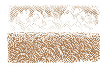 Wheat Field Illustration, Vect...