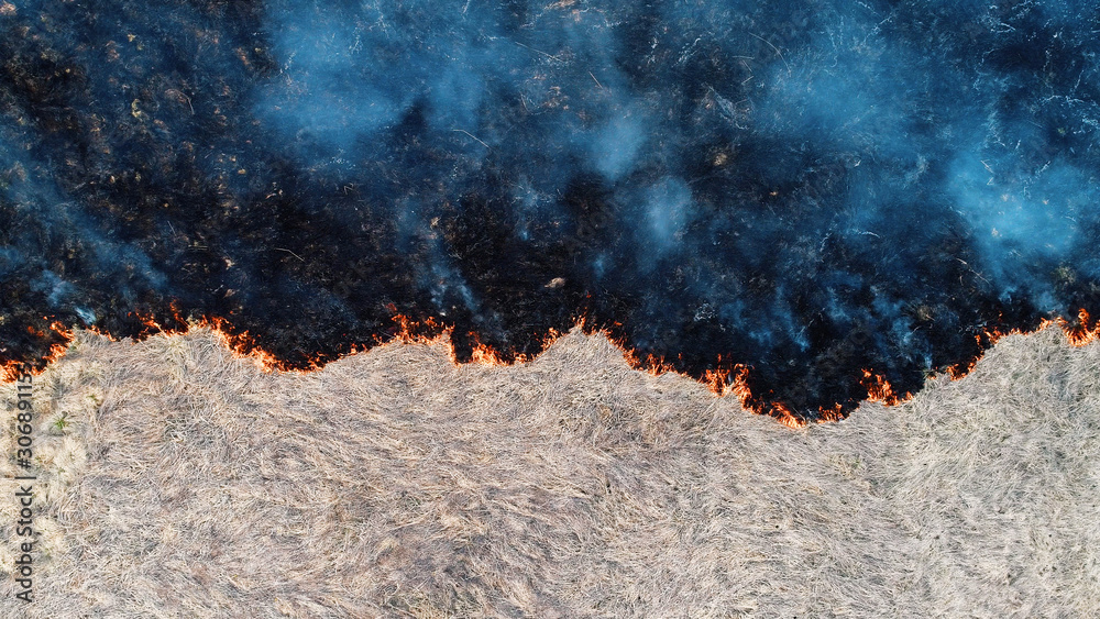 Forest and field fire. Dry grass burns, natural disaster. Aerial view. View vertically down, the camera hangs motionless.