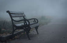 Wooden Bench In The Park A Fog...