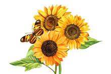 Watercolor Bouquet Of Sunflowe...