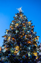 Big Glowing Decorated Christmas Tree Standing In Main Market Square, Winter Holidays, Peoples Enjoy