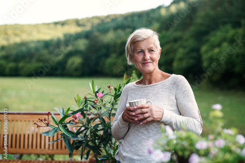Obraz Senior woman with coffee standing outdoors on a terrace in summer. - fototapety do salonu