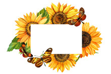 Watercolor Sunflowers And  Butterflies, Hand Drawn Floral Illustration Isolated On White Background. Card With Space For Text, Wedding, Invitation, Template Card.