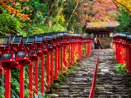 秋の京都 貴船神社 Canvas Print