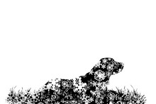 Vector Silhouette Of Snowy Dog...