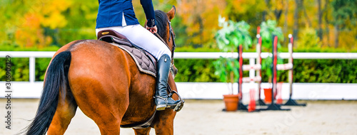 Fototapeta Beautiful girl on sorrel horse in jumping show, equestrian sports. Light-brown horse and girl in uniform going to jump. Horizontal web header or banner design. obraz